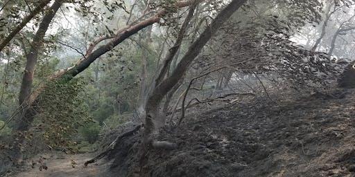 Post-wildfire land stewardship workshop