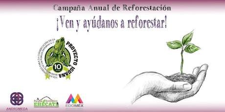 Campaña Anual de Reforestación Red Andrómeda  entradas