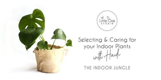 Little Oak Studio Plant Party with The Indoor Jungle