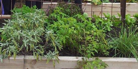 Green Living Workshop - Organic Gardening at Point Clare Community Garden tickets