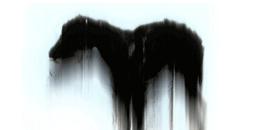 Samentafel Filosofie en de schaduw van de zwarte hond