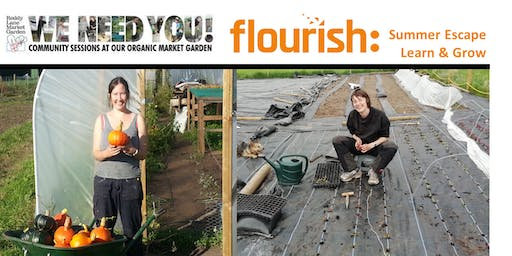 Flourish - Learn & Grow - Summer Escape