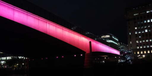 Illuminated River Guided Walk - the artist, the project and the bridges