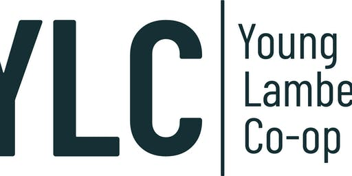 YLC Extraordinary General Meeting
