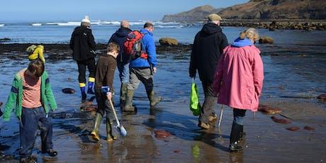 Runswick Bay Fossil Hunting Trip, 2-August-19 tickets