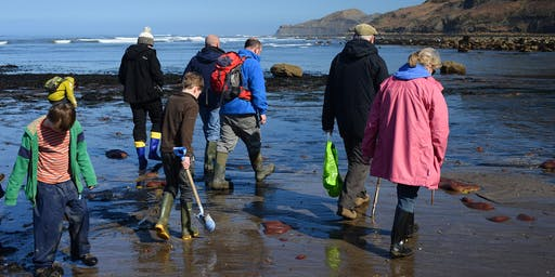 Runswick Bay Fossil Hunting Trip, 2-August-19