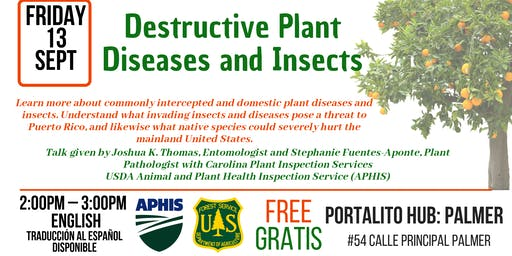 Destructive Plant Diseases and Insects