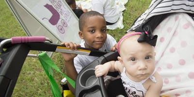 Healthy Start Baby Buggy Walk in the Park