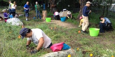 Castro Valley Creek Coastal Cleanup Day