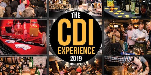 The 2019 CDI Experience