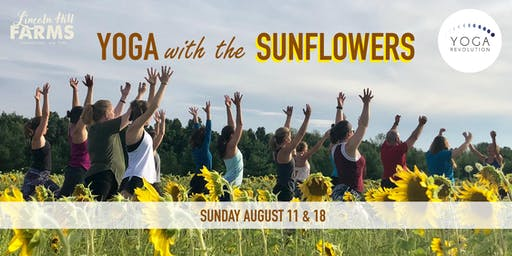 Yoga with the Sunflowers Hosted by Roc Yoga Revolution @ Lincoln Hill Farms