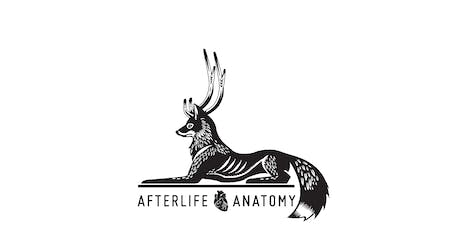Hamster Taxidermy Class with Afterlife Anatomy tickets