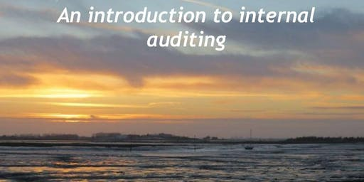 Internal Audit 101: Introduction to Internal Auditing - Princeton, NJ - Yellow Book & CPA CPE