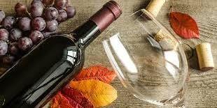 Seasonal Sips: Fall Favorites