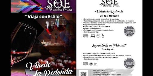 Tour Del Arte , Queso y Vino en Queretaro    Vendimia 2019  La Redonda