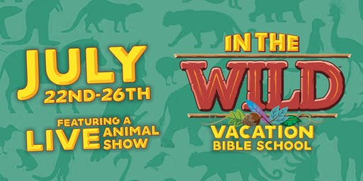 In The Wild VBS (Vacation Bible School) 2019