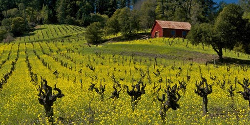 Sonoma County Winegrowers Sustainability Talk & Wine Tasting