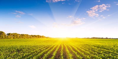Managing Agricultural lands for the Property Owner