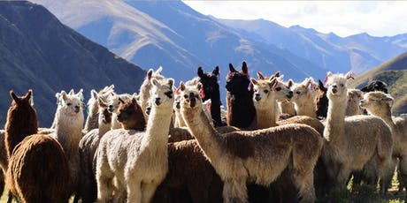 Fashion Farming: Peru Symposium  tickets