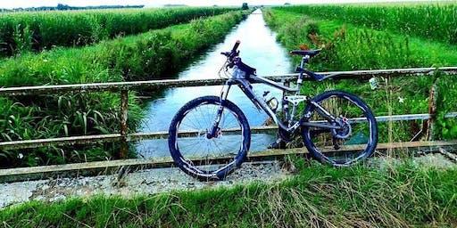 Formation de mécanique vélo, freins sur jantes et câblage