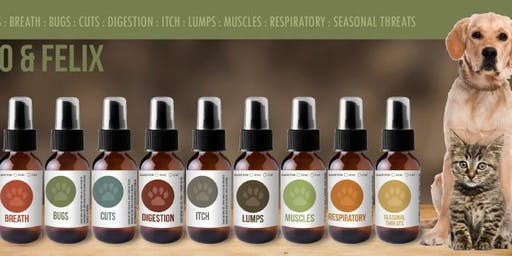 Essential Oil Make & Take 3