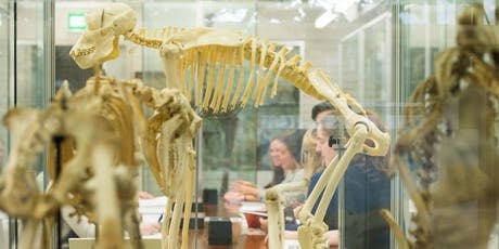 Science Festival 2019 - Tiegs Zoology Museum Tour tickets