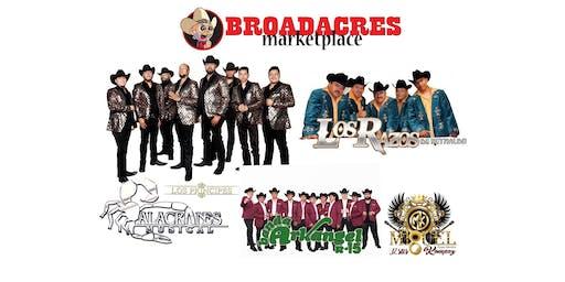 Festival Musical con Alacranes Musical