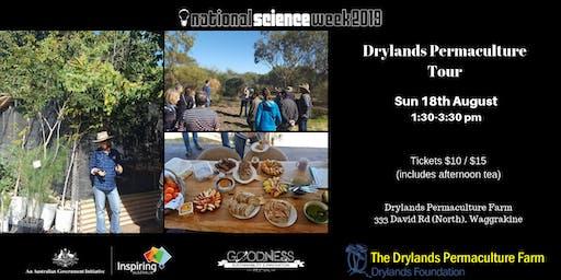 Drylands Permaculture Farm Tour