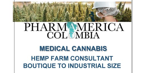 HEMP Farming in Colombia -  Boutique to Industrial