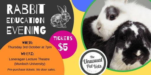 Rabbit Education Night