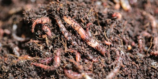 Composting and Worm Farm Workshop - Presented by EnviroCom