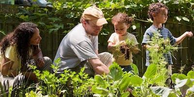 Planting out a garden - September 2019