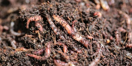 Composting and Worm Farm Workshop - Presented by EnviroCom tickets
