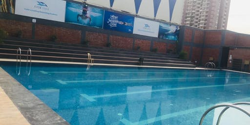 Fitso SEALs Swimming Classes ABES College