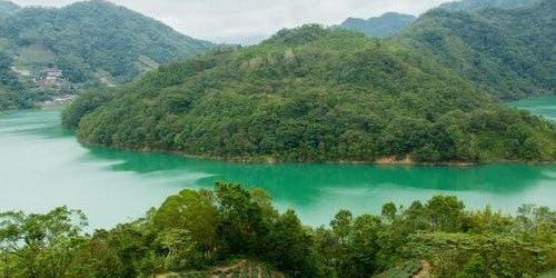 Thousand Island Lake & Pinglin Tea Plantation: Guided Tour from Taipei