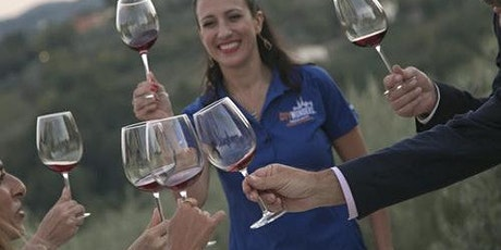 Wine Tasting & Dinner at a Florence Villa tickets