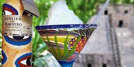 Discover Mexico Park Cozumel: Entrance + Tequila Tasting boletos