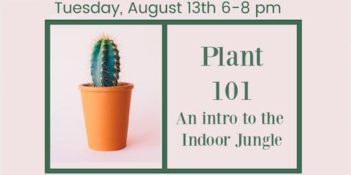 Houseplant 101 - Grow Geneva
