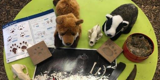 Wildlife Trust Nature Detective and Craft Activity