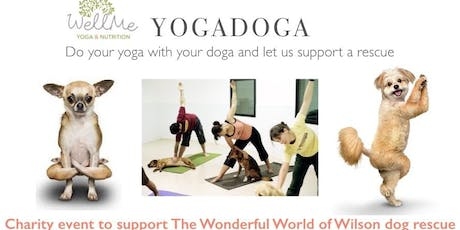 YogaDoga - bring your doga to our yoga and enjoy a fun day of play tickets