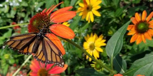 School Gardens and Monarch Conservation Workshop