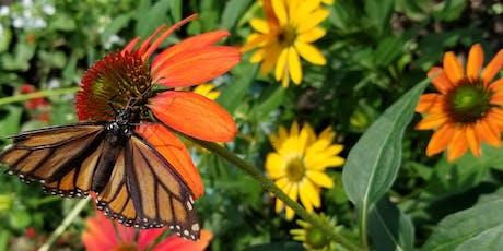 School Gardens and Monarch Conservation Workshop (WEEKDAY) tickets