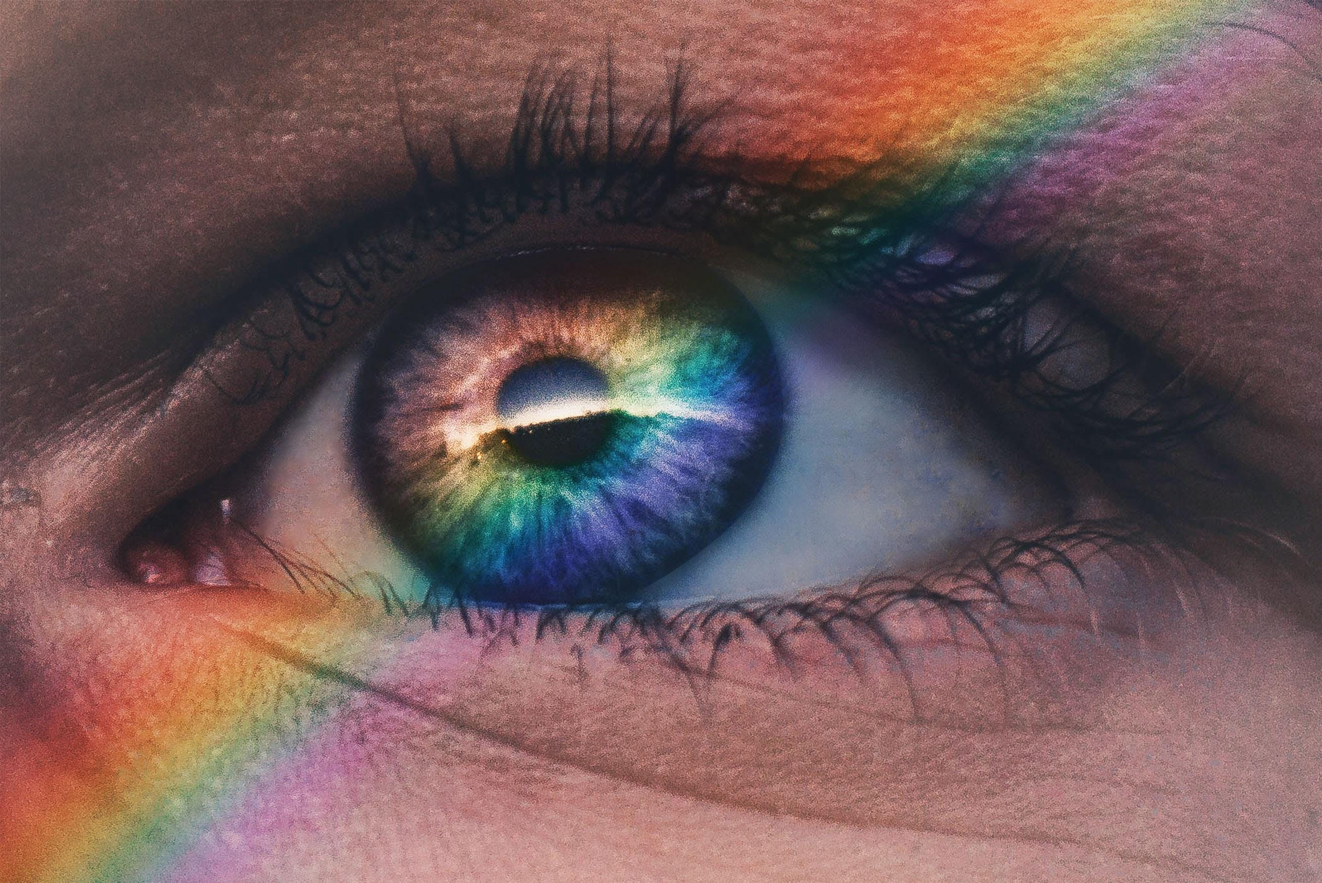 Working with LGBTQ Clients Pride and Shame - the Emotional Landscape of Identity