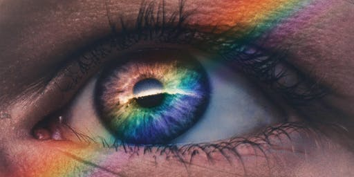 """Working with LGBTQ+ Clients: """"Pride and Shame - the Emotional Landscape of Identity"""""""