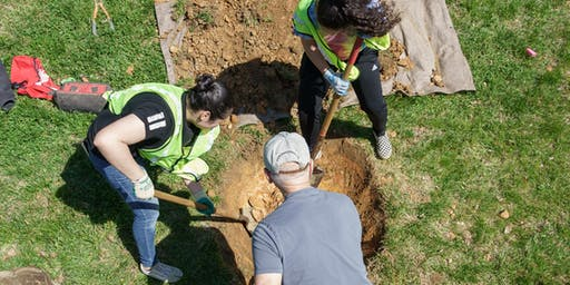 Volunteer: Community Tree Planting - The Park at LeDroit