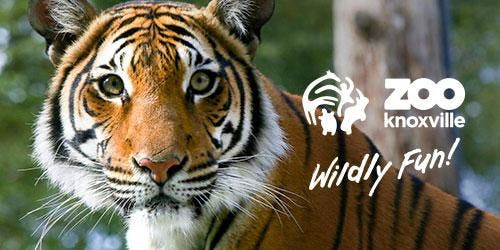 Employee Appreciation Zoo Knoxville