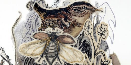 'What Do You Mean by Embroidery?'  A talk by Diana Springall