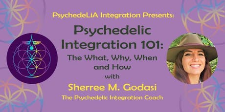 Psychedelic Integration 101 tickets