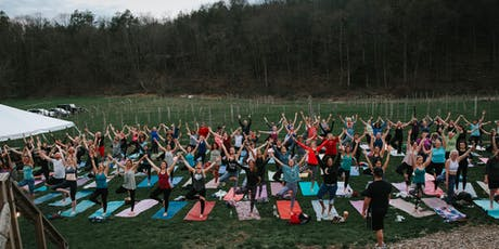 Yoga at Arrigoni Winery - AUG 2019 tickets