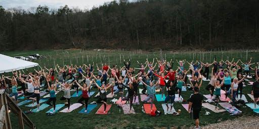 Yoga at Arrigoni Winery - AUG 2019